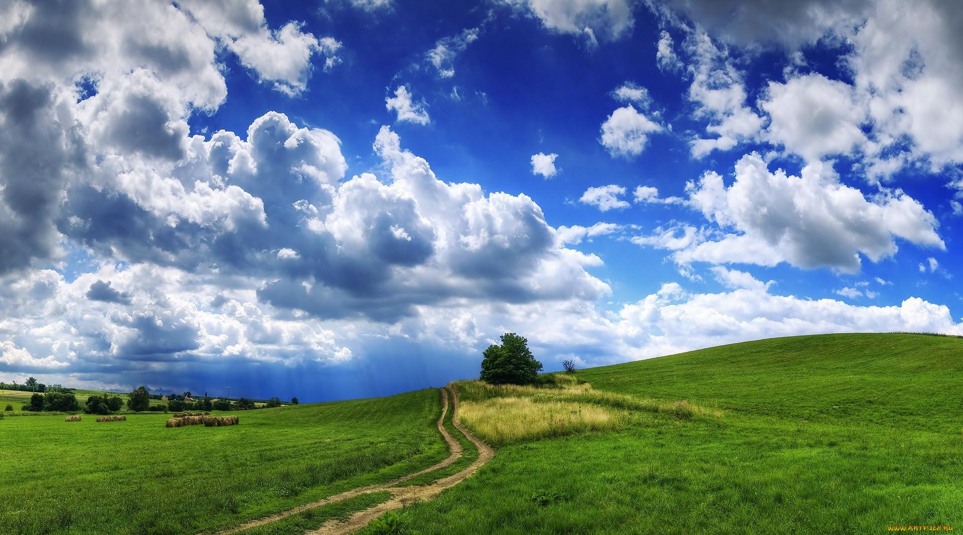 предприятия картинки голубое небо природа жизни каждого